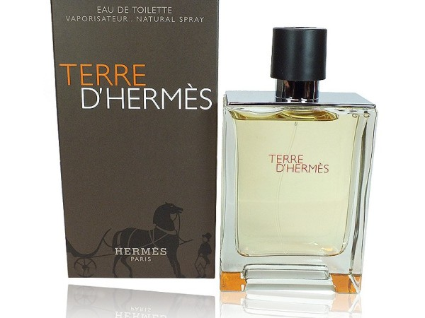 Hermes Terre Dhermes 100 ml EDT Spray